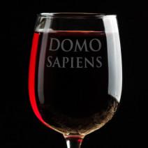 """Бокал для вина """"Domosapiens"""""""