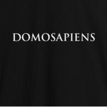 """Футболка """"Domosapiens"""" мужская"""