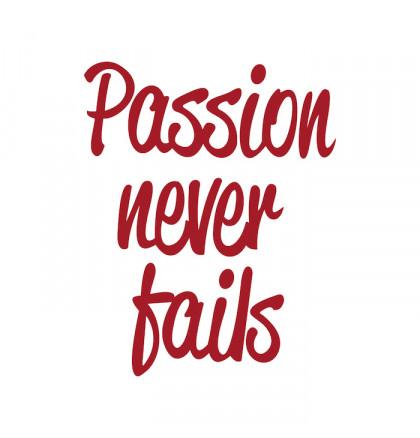 """Футболка женская """"Passion Never Fails"""", фото 3, цена 450 грн"""